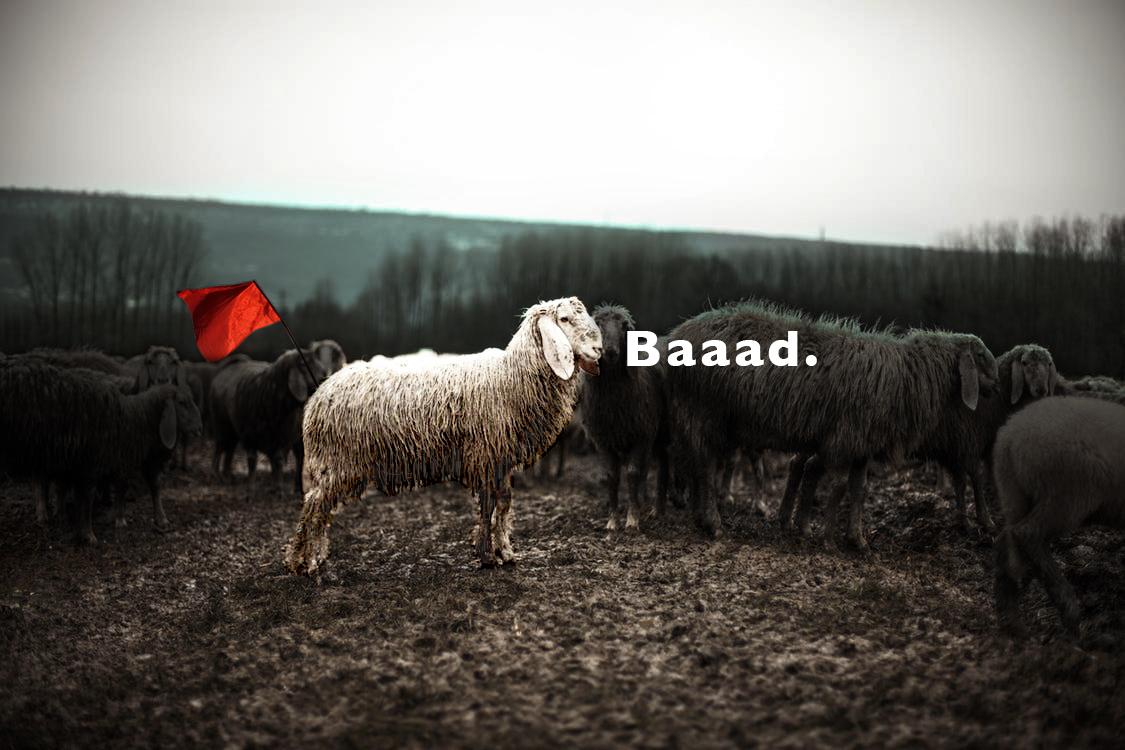 good family, mel blanchard, the last generation, tlg, dating, undateable, black sheep